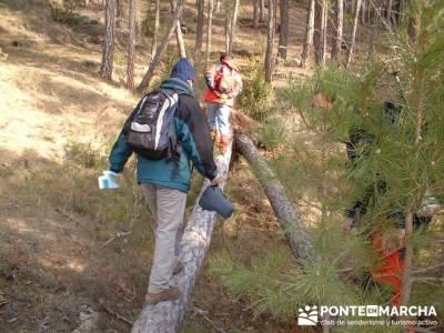 Caminando en las majadas; rutas por la sierra; excursiones sierra madrid